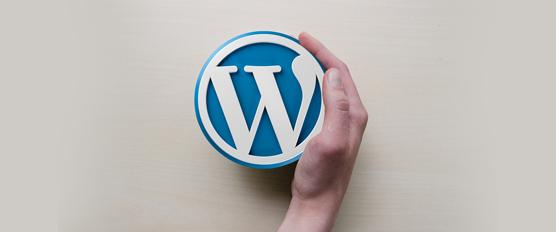 Wordpress Website Help