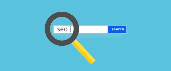 Local SEO Company Tampa